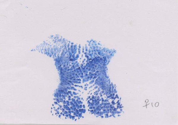 經產鼻紋– 白群 - 耳號10