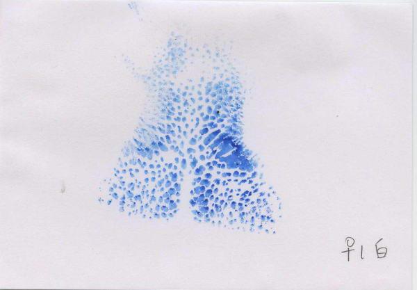 經產鼻紋– 白群 - 耳號1