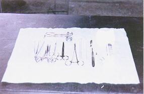豬胚採集與鏡檢 - 外科器具(畜產種原庫及基因交流p27)