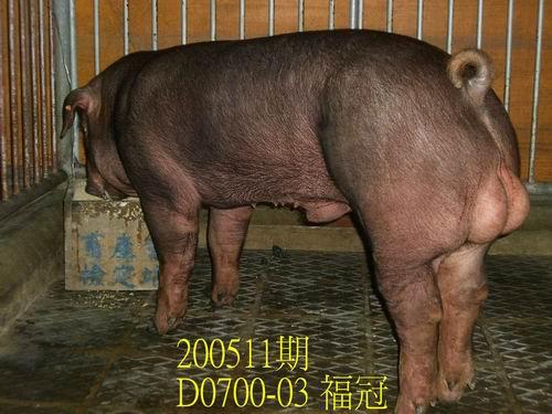 中央畜產會200511期D0700-03拍賣相片