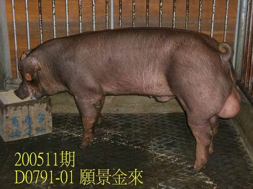 中央畜產會200511期D0791-01拍賣相片