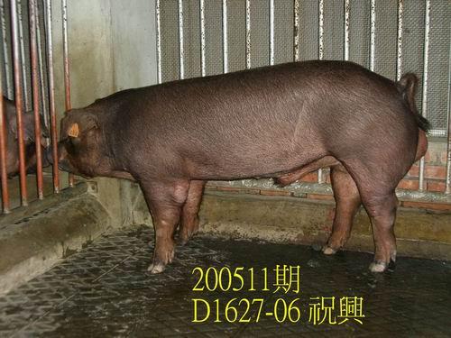 中央畜產會200511期D1627-06拍賣相片