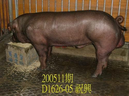 中央畜產會200511期D1626-05拍賣相片