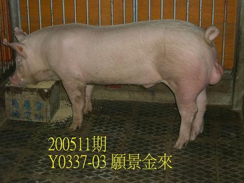 中央畜產會200511期Y0337-03拍賣相片