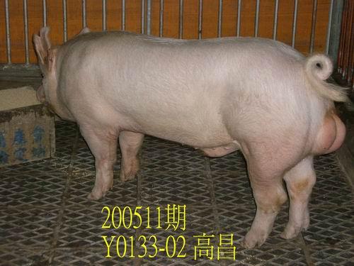 中央畜產會200511期Y0133-02拍賣相片