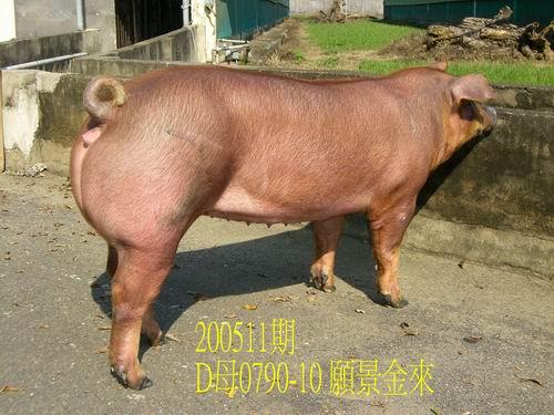 中央畜產會200511期D0790-10拍賣相片