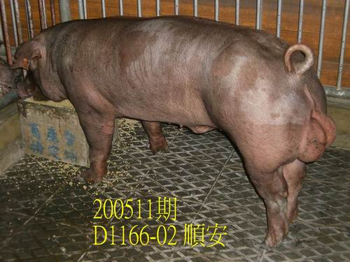 中央畜產會200511期D1166-02拍賣相片