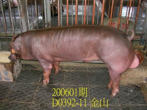 中央畜產會200601期D0392-11拍賣相片