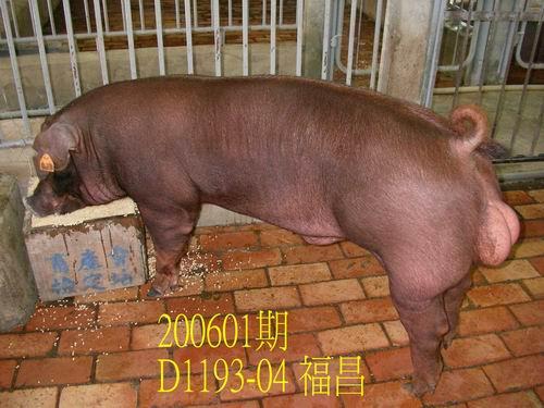 中央畜產會200601期D1193-04拍賣相片