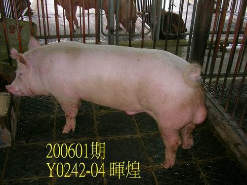 中央畜產會200601期Y0242-04拍賣相片