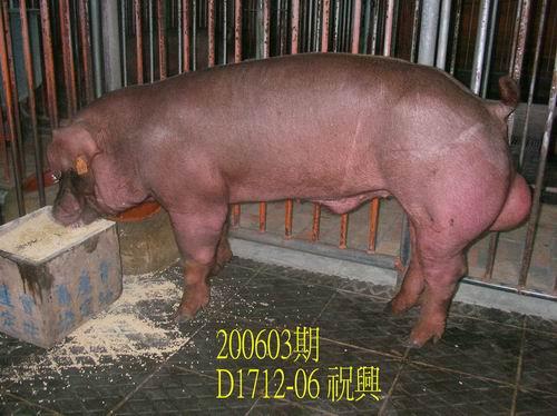 中央畜產會200603期D1712-06拍賣相片