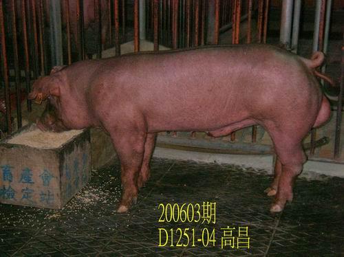 中央畜產會200603期D1251-04拍賣相片