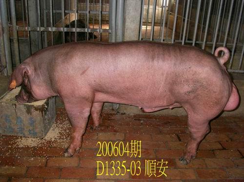 中央畜產會200604期D1335-03拍賣相片
