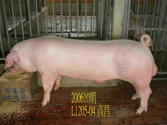 中央畜產會200610期L1205-04拍賣相片