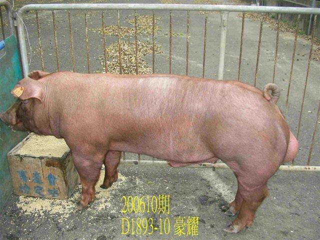 中央畜產會200610期D1893-10拍賣相片
