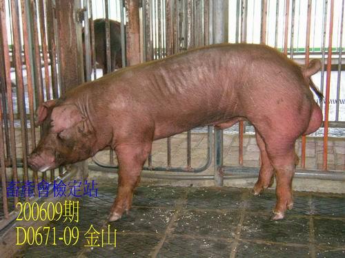 中央畜產會200609期D0671-09拍賣照片