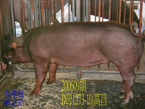 中央畜產會200609期D1273-10拍賣照片