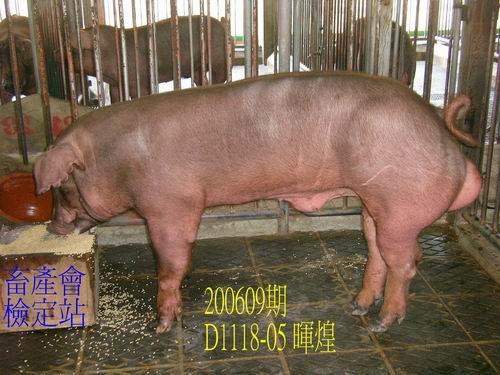 中央畜產會200609期D1118-05拍賣照片