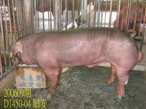 中央畜產會200609期D1450-04拍賣照片