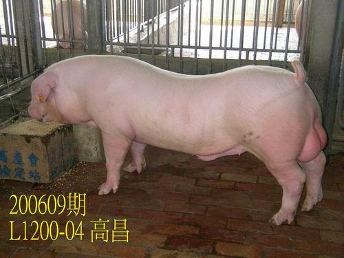 中央畜產會200609期L1200-04拍賣照片