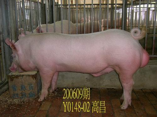 中央畜產會200609期Y0148-02拍賣照片