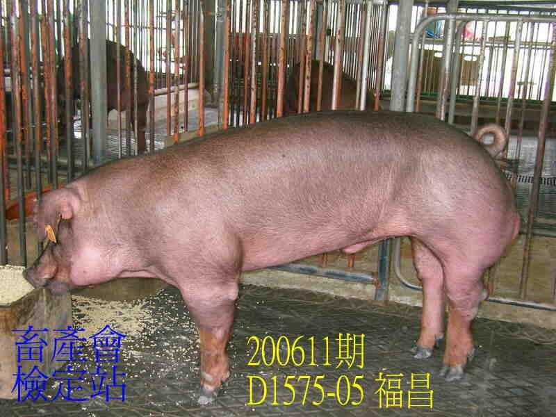 中央畜產會200611期D1575-05拍賣照片