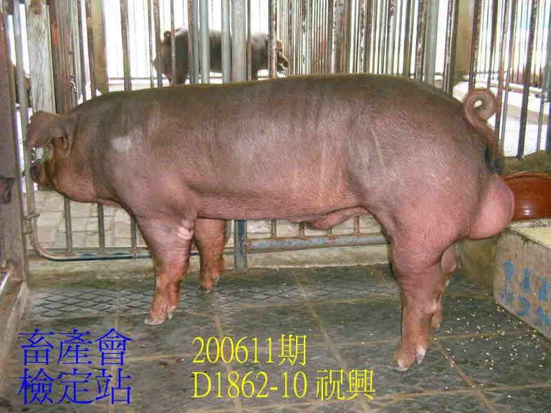 中央畜產會200611期D1862-10拍賣照片