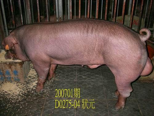 中央畜產會200701期D0275-04拍賣照片