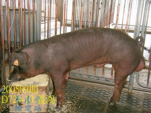 中央畜產會200509期D0724-10拍賣照片