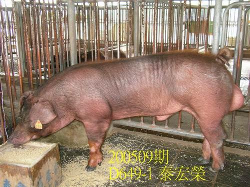 中央畜產會200509期D0649-01拍賣照片