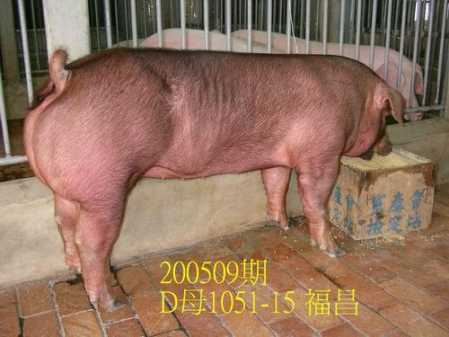 中央畜產會200509期D1051-15拍賣照片