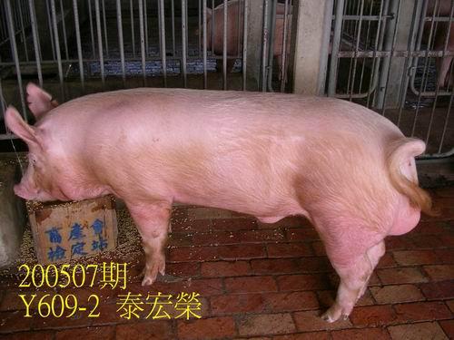 中央畜產會200507期Y0609-02拍賣照片