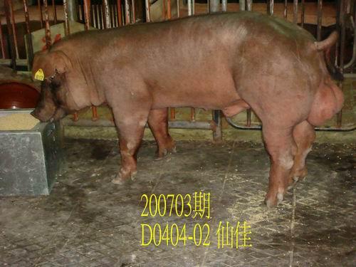 中央畜產會200703期D0404-02拍賣照片