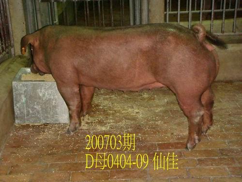 中央畜產會200703期D0404-09拍賣照片