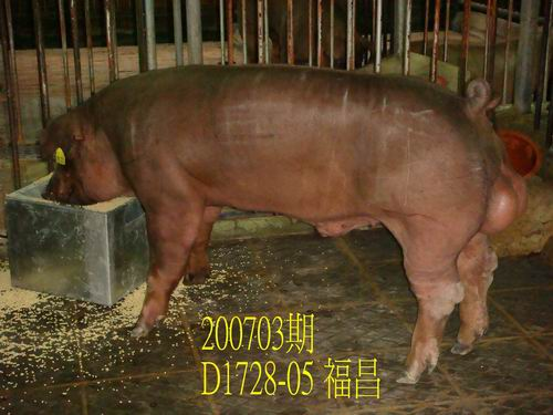 中央畜產會200703期D1728-05拍賣照片
