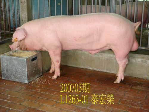 中央畜產會200703期L1263-01拍賣照片