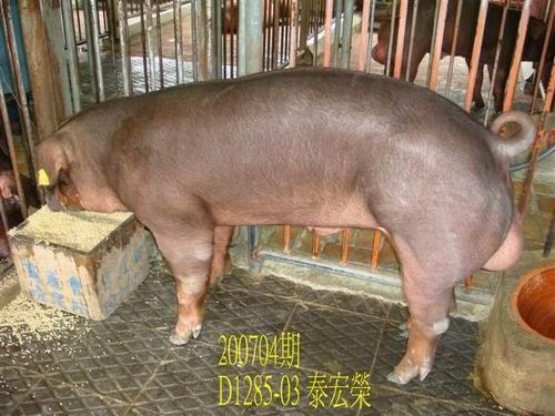 中央畜產會200704期D1285-03拍賣照片
