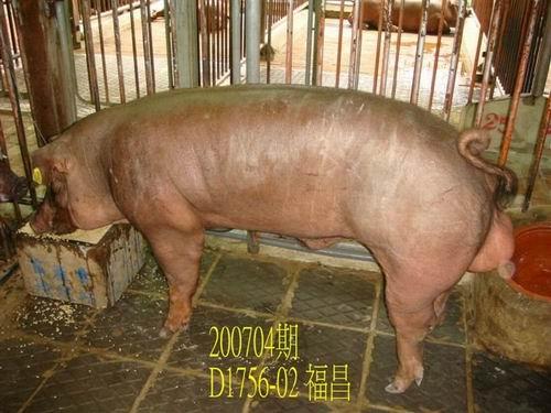 中央畜產會200704期D1756-02拍賣照片