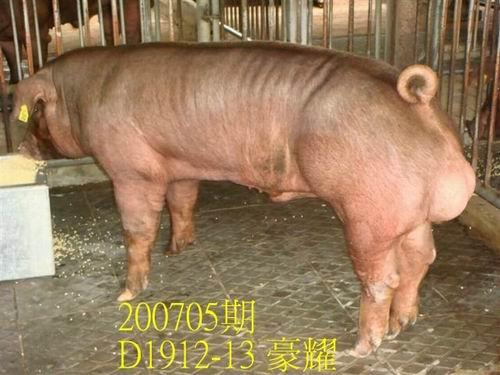 中央畜產會200705期D1912-13拍賣照片