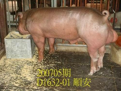 中央畜產會200705期D1632-10拍賣照片