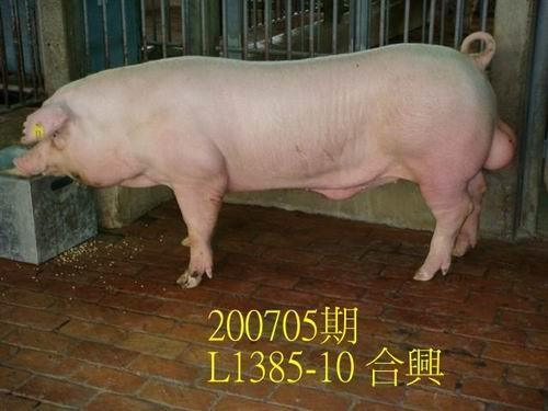 中央畜產會200705期L1385-10拍賣照片