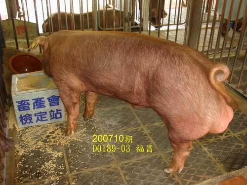 中央畜產會200710期D0189-03拍賣照片