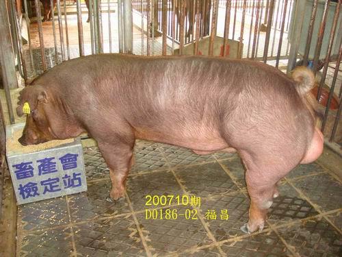 中央畜產會200710期D0186-02拍賣照片