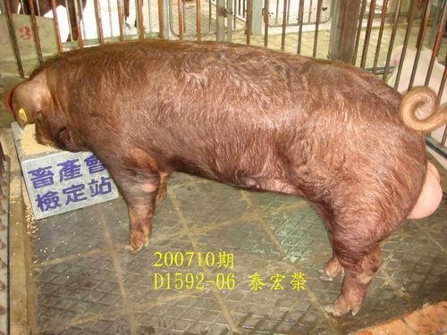 中央畜產會200710期D1592-06拍賣照片