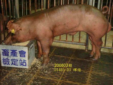 中央畜產會200803期D1465-03拍賣照片