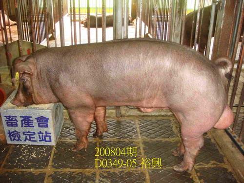 中央畜產會200804期D0349-05拍賣照片