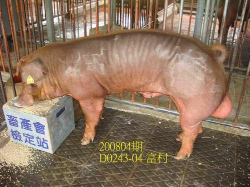 中央畜產會200804期D0243-04拍賣照片