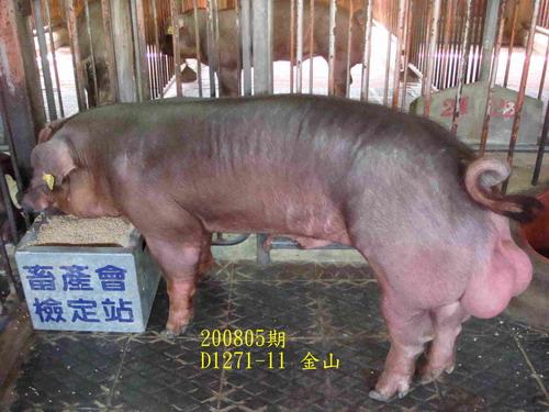 中央畜產會200805期D1271-11拍賣照片