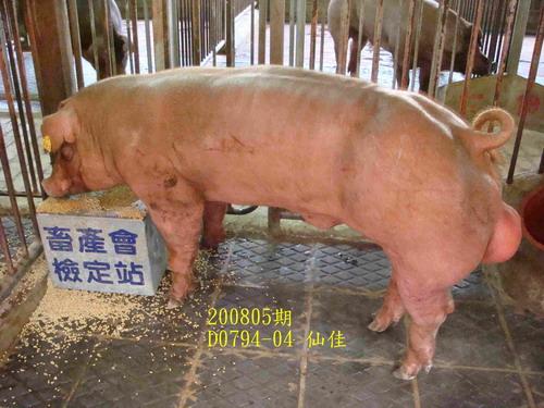 中央畜產會200805期D0794-04拍賣照片