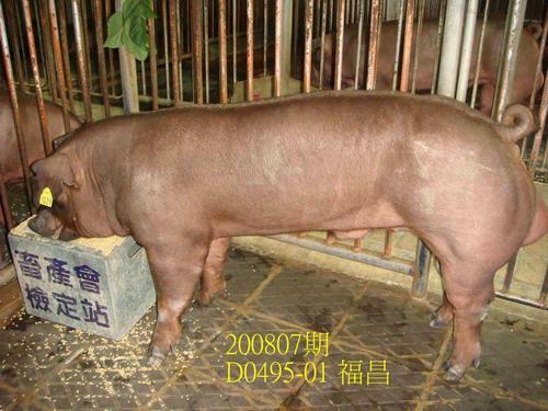 中央畜產會200807期D0495-01拍賣照片
